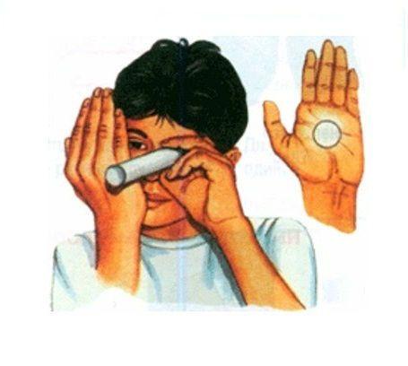 Исследование бинокулярного зрения