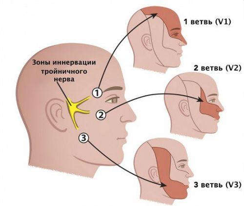 Тройничный нервв