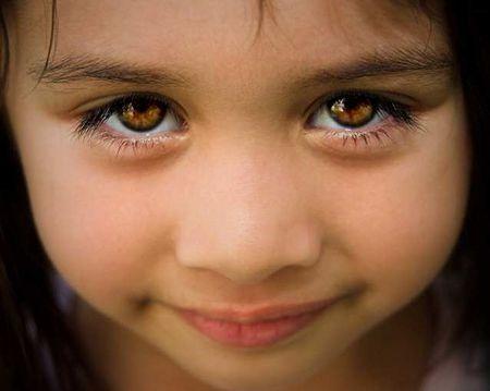 Медовый цвет глаз