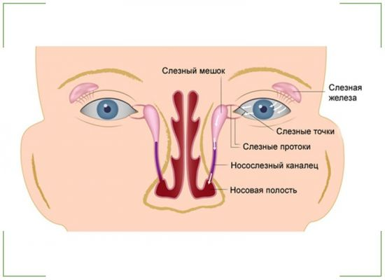 Носослезный канал