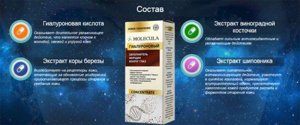 Состав геля Молекула