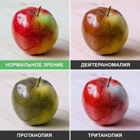 Цвет яблокаглазами дальтоника